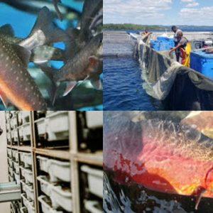 Canadian Freshwater Aquaculture Conference 2020 [CANCELLED]